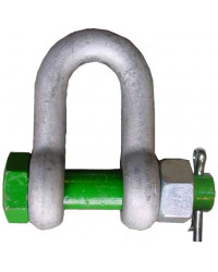 Dee shackle with safety bolt