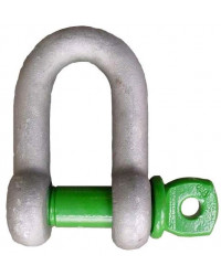 Dee shackle with screw pin